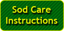 Sod Care Instructions